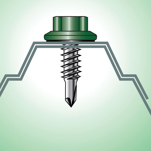 Stitch Screw App Color Illustration Web